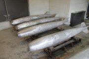 Large Cast Projectiles